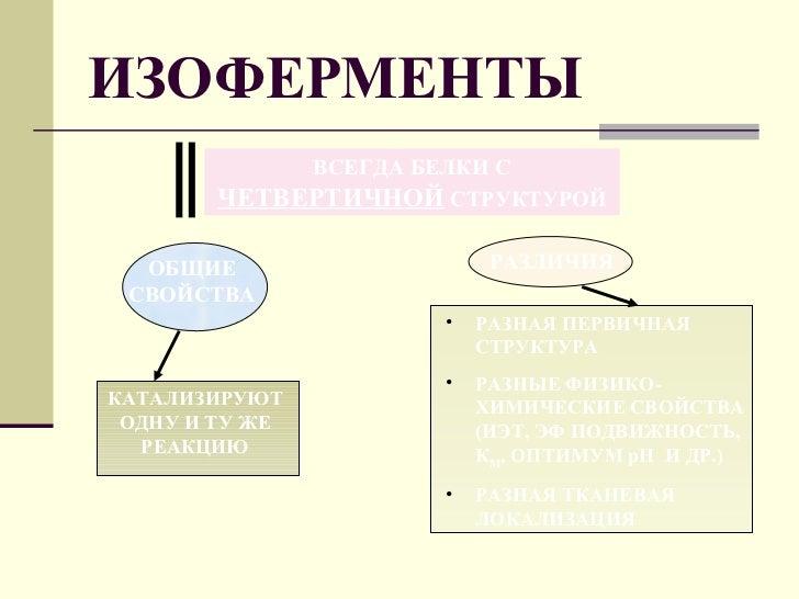 Изофермент