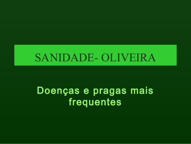 12725493 sanidade -oliveira
