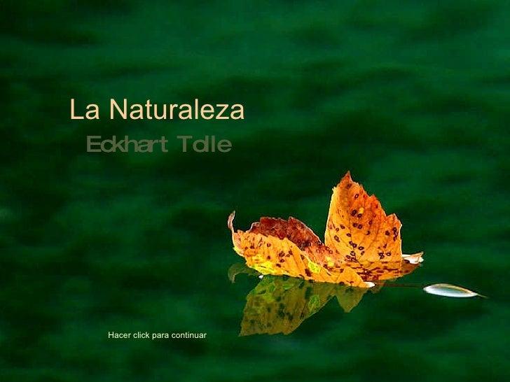 Eckhart Tolle: Naturaleza (por: Amik / Carlos Rangel)
