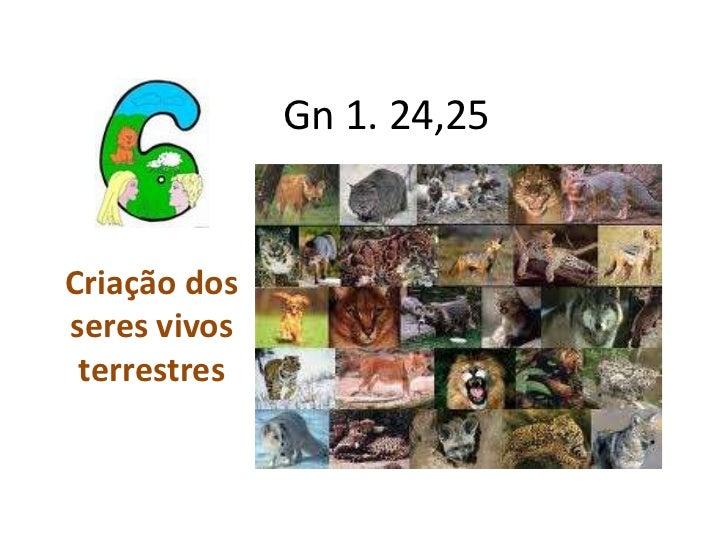 Gn 1. 24,25Criação dosseres vivos terrestres
