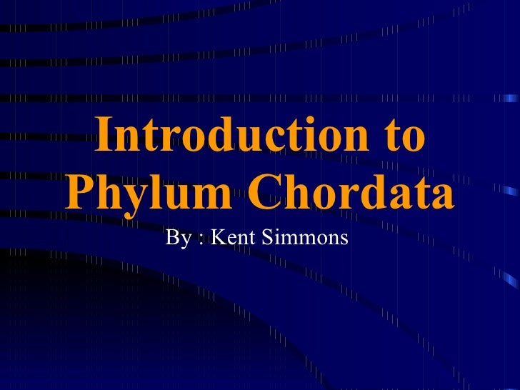 Introduction to Phylum Chordata By : Kent Simmons