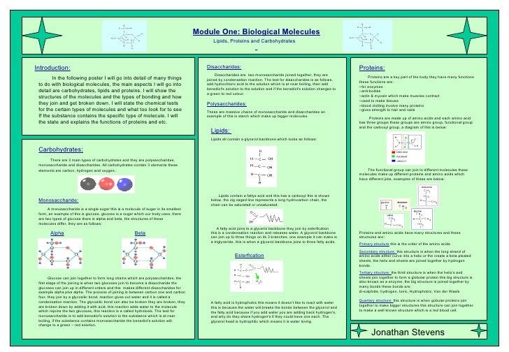 12 C Scientific Posters