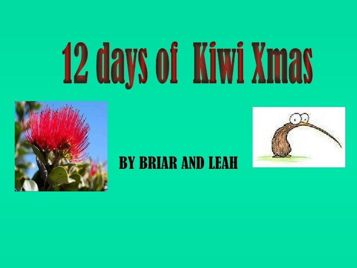 BY BRIAR AND LEAH 12 days of  Kiwi Xmas