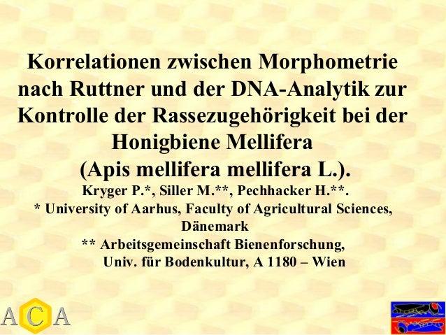 Korrelationen zwischen Morphometrienach Ruttner und der DNA-Analytik zurKontrolle der Rassezugehörigkeit bei der          ...