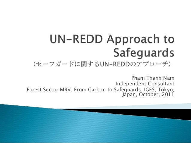 Pham Thanh Nam                                   Independent ConsultantForest Sector MRV: From Carbon to Safeguards, IGES,...