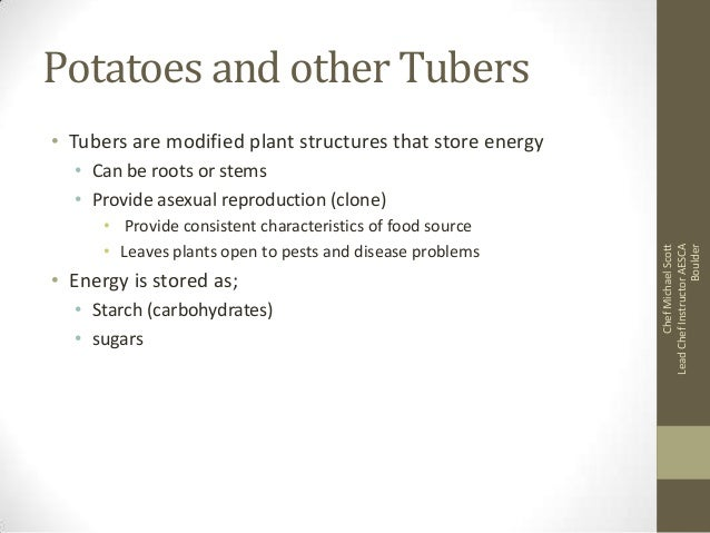 Potatoes and other Tubers • Tubers are modified plant structures that store energy  • Provide consistent characteristics o...