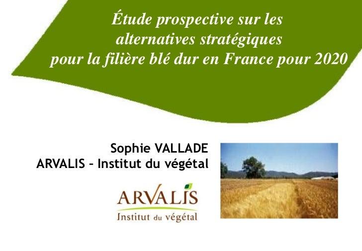 Étude prospective sur les            alternatives stratégiques  pour la filière blé dur en France pour 2020            Sop...