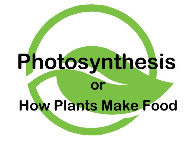 Photosynthesis         orHow Plants Make Food
