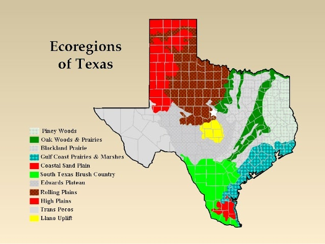 12 S070502 H_ecoregions Of Texas Ppt11