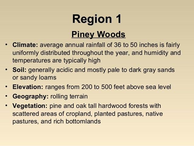 Oak Woods And Prairies or Oak Woods Prairies