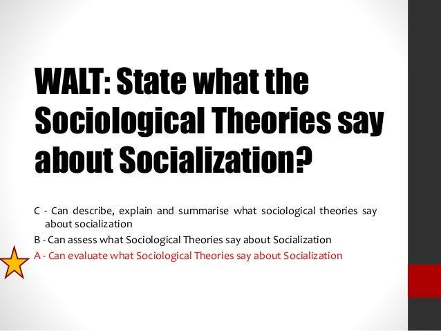 Political Socialization Agent