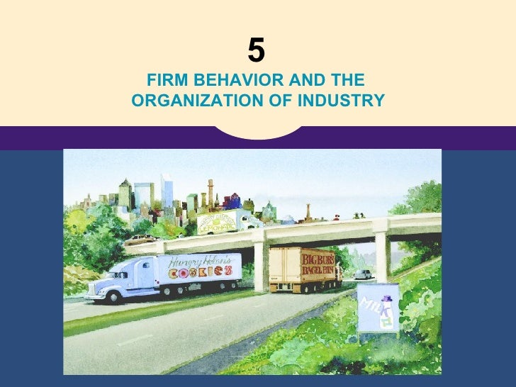 5   FIRM BEHAVIOR AND THE  ORGANIZATION OF INDUSTRY