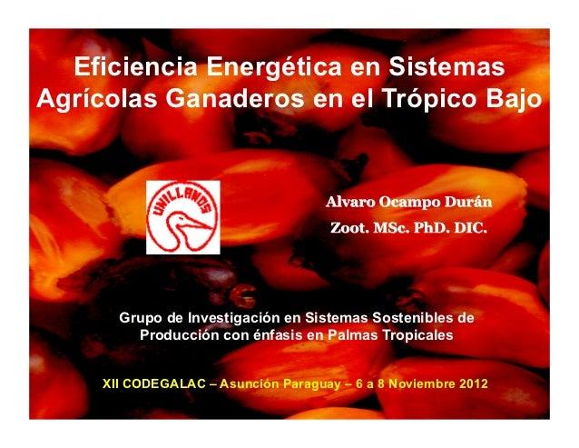Eficiencia Energética en SistemasAgrícolas Ganaderos en el Trópico Bajo      Grupo de Investigación en Sistemas Sostenible...