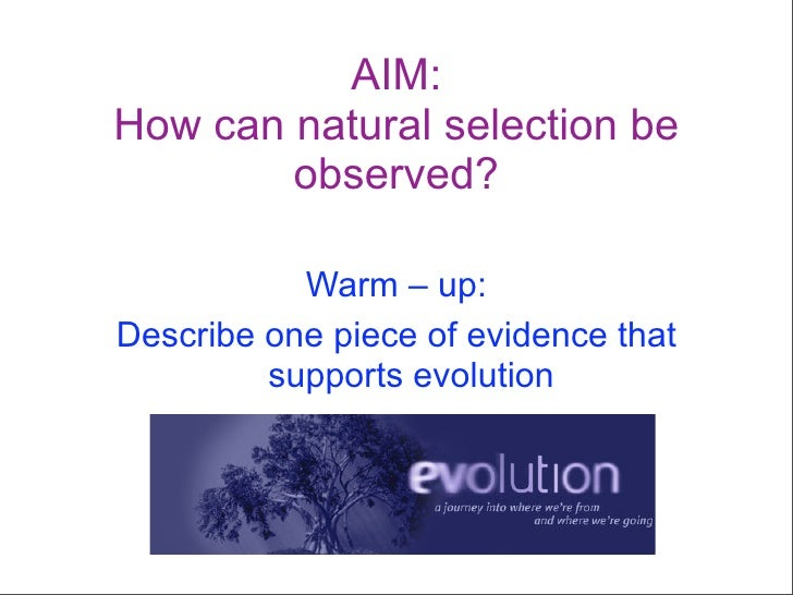 AIM: How can natural selection be         observed?             Warm – up: Describe one piece of evidence that          su...