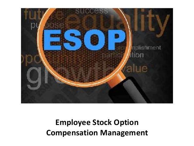 Management compensation stock options