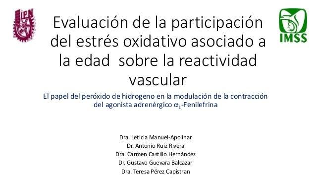 Evaluación de la participación del estrés oxidativo asociado a la edad sobre la reactividad vascular El papel del peróxido...