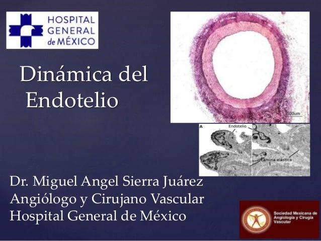 Dinámica del Endotelio Dr. Miguel Angel Sierra Juárez Angiólogo y Cirujano Vascular Hospital General de México