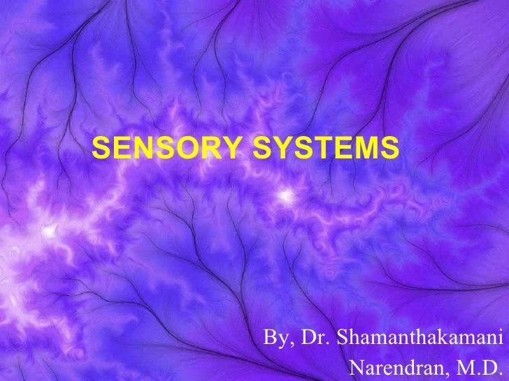 13 Brain & Five Seneses part-2.ppt