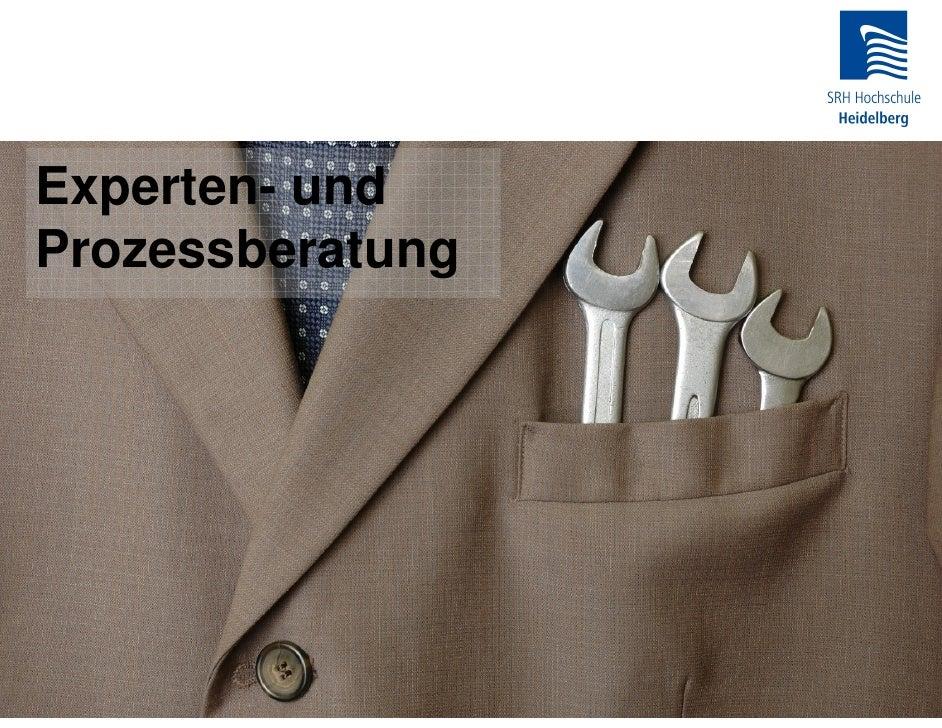 13 - Fh Heidelberg Experten- und Prozessberatung