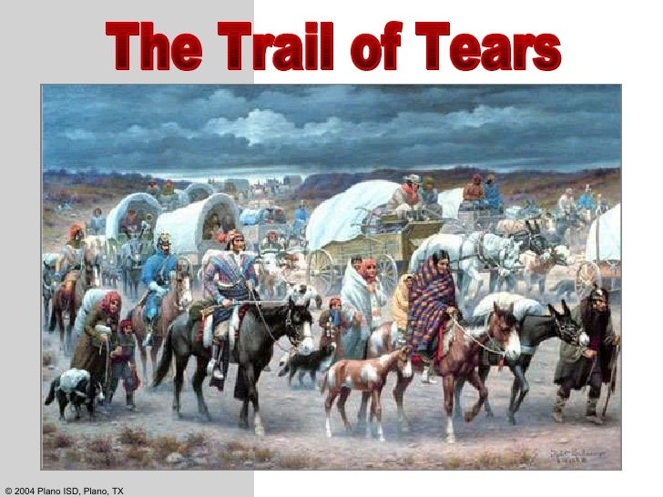 andrew jackson and the trail of tears essays