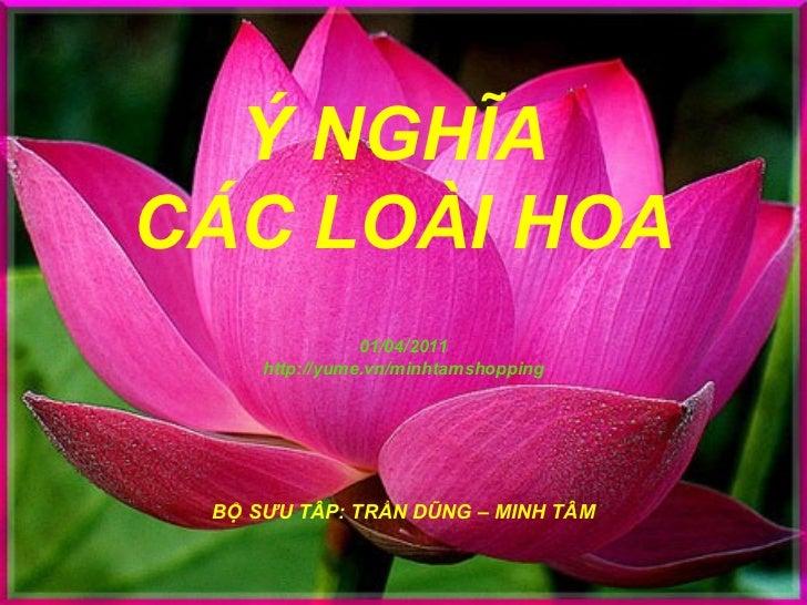 Ý NGHĨA  CÁC LOÀI HOA 01/04/2011 http://yume.vn/minhtamshopping BỘ SƯU TÂP: TRẦN DŨNG – MINH TÂM