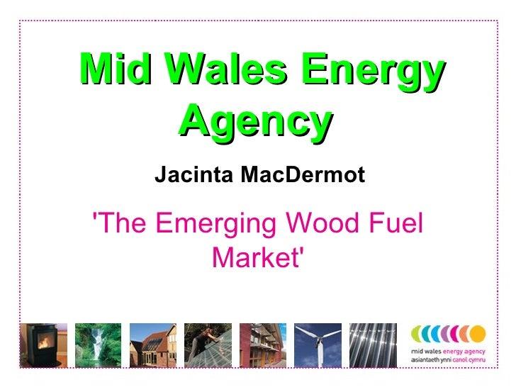 Oswestry Energy Fair - Jacinta Macdermot