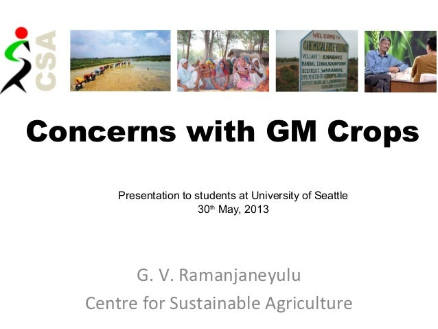 Concerns with GM CropsG. V. RamanjaneyuluCentre for Sustainable AgriculturePresentation to students at University of Seatt...