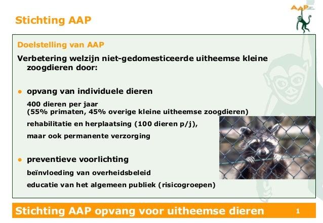 Stichting AAP opvang voor uitheemse dieren 1Stichting AAPDoelstelling van AAPVerbetering welzijn niet-gedomesticeerde uith...