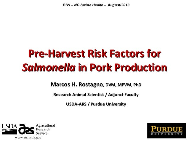 Dr. Marcos Rostagno - Pre-Harvest Risk Factors for Salmonella in Pork Production - PIP