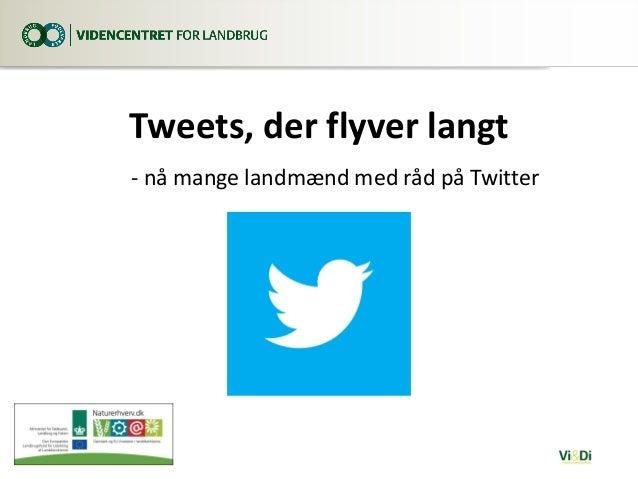 Tweets, der flyver langt - nå mange landmænd med råd på Twitter