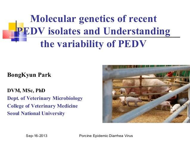 Dr. Bong Kyun Park - Research View of Porcine Epidemic Diarrhea Virus