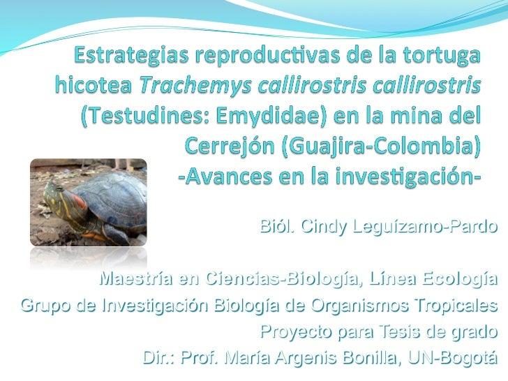 Biól. Cindy Leguízamo-Pardo        Maestría en Ciencias-Biología, Línea EcologíaGrupo de Investigación Biología de Organis...