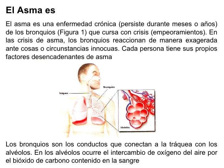 El Asma es  El asma es una enfermedad crónica (persiste durante meses o años) de los bronquios (Figura 1) que cursa con cr...