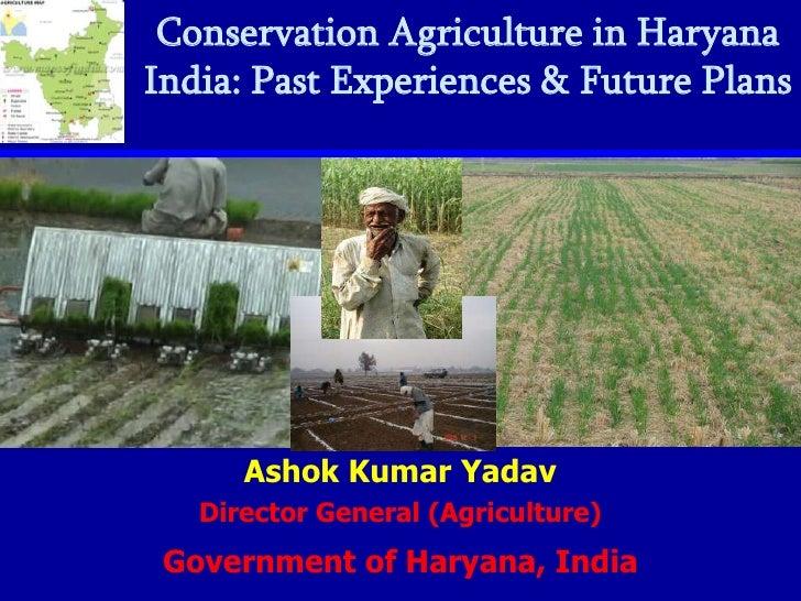 CA in Haryana India: past experiences and future plans. Ashok K Yadav