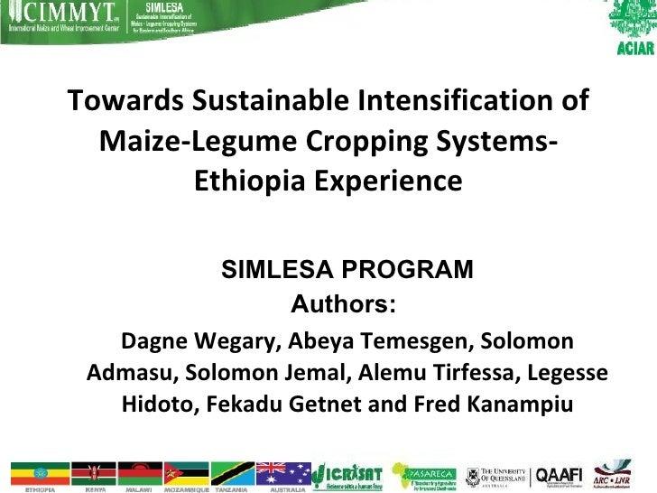 Towards Sustainable Intensification of Maize-Legume Cropping Systems- Ethiopia Experience <ul><ul><li>SIMLESA PROGRAM </li...