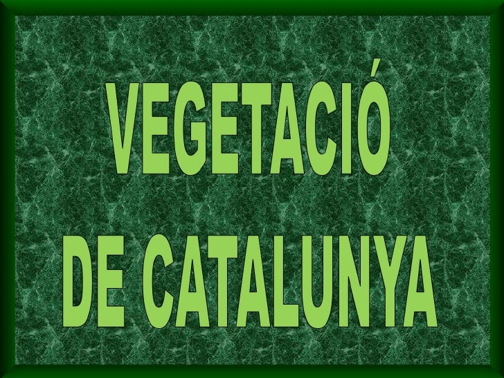 VEGETACIÓ DE CATALUNYA
