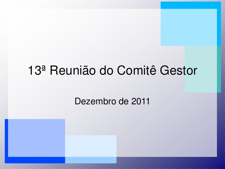 13º Reunião do comitê gestor