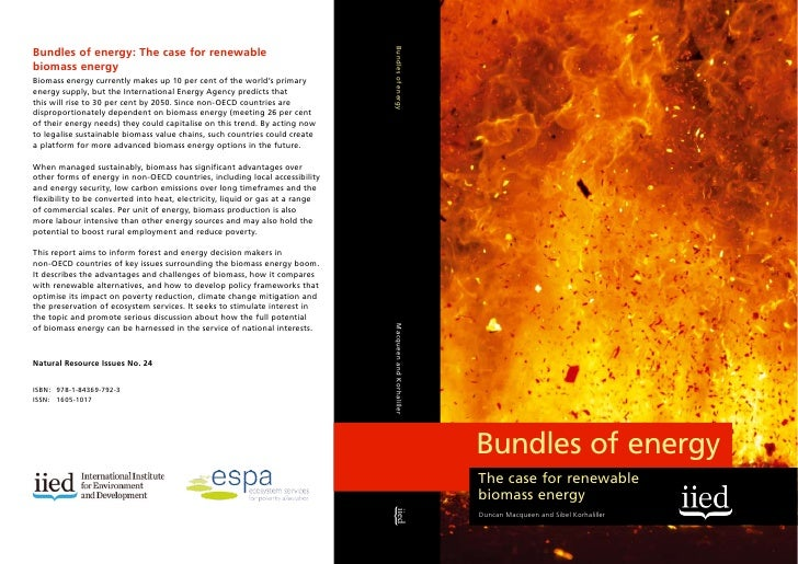 Bundles of Energy: The Case for Renewable Biomass