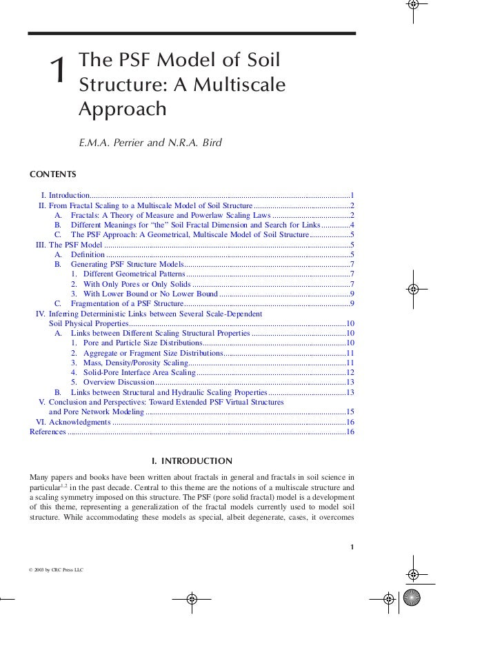 The PSF Model of Soil         1            Structure: A Multiscale                      Approach                      E.M....