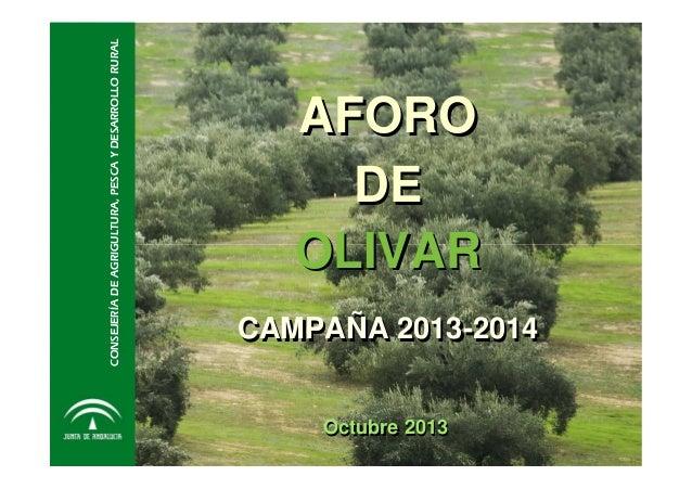 CONSEJERÍA DE AGRIGULTURA, PESCA Y DESARROLLO RURAL  AFORO DE OLIVAR  CAMPAÑA 2013-2014 Octubre 2013