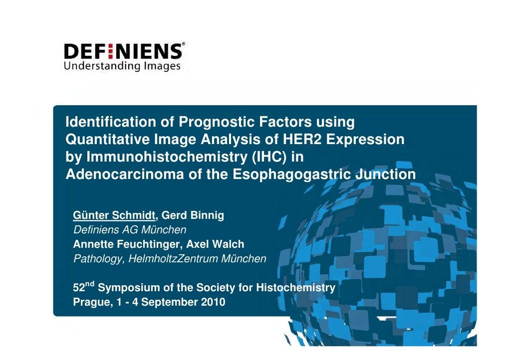 1390 Identification Of Prognostic Factors Using Quantitative Image Analysis Of Her2 Expression.Pdf 1390