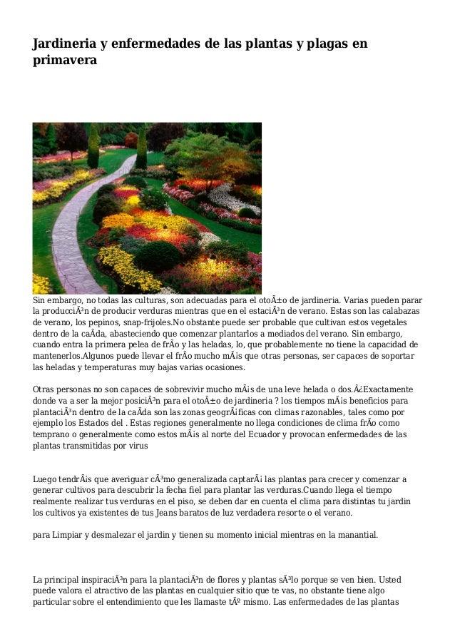 Jardineria y enfermedades de las plantas y plagas en primavera for Jardineria y plantas
