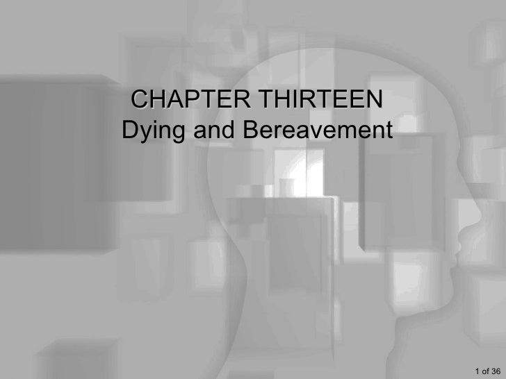 13 HUS 133   Dying and Bereavement