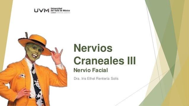 Nervios Craneales III Nervio Facial Dra. Iris Ethel Rentería Solís