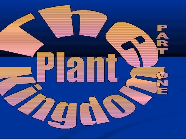 13 plant kingdom_part_one