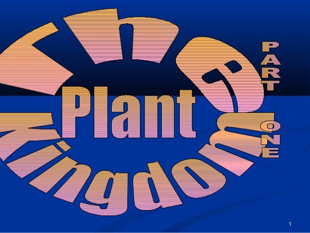 13 plant kingdom_part_one