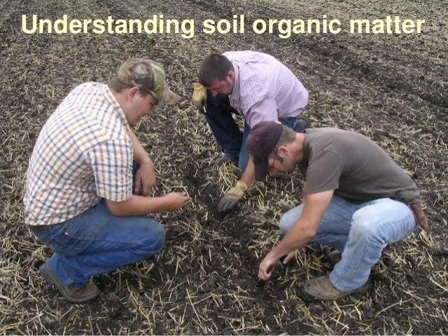 Understanding Soil Organic Matter
