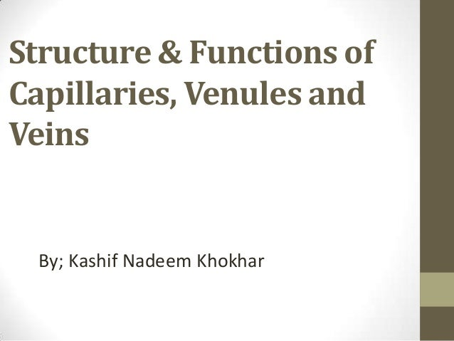 Structure & Functions of Capillaries, Venules and Veins  By; Kashif Nadeem Khokhar
