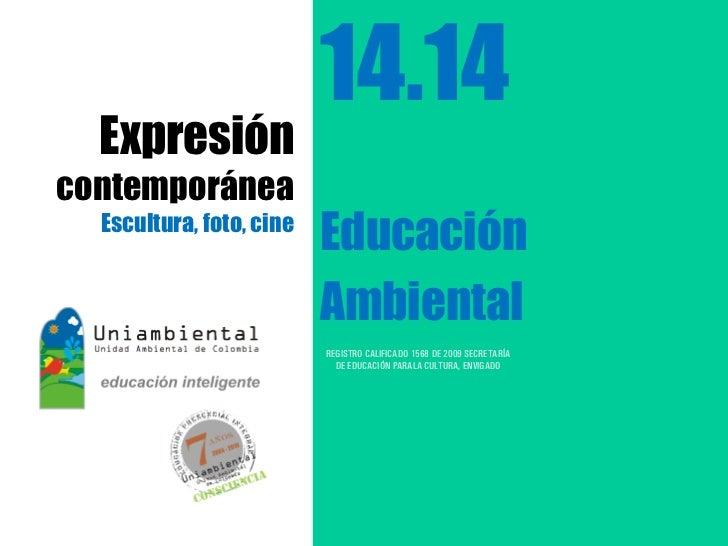 14.14  Expresióncontemporánea  Escultura, foto, cine                          Educación                          Ambiental...