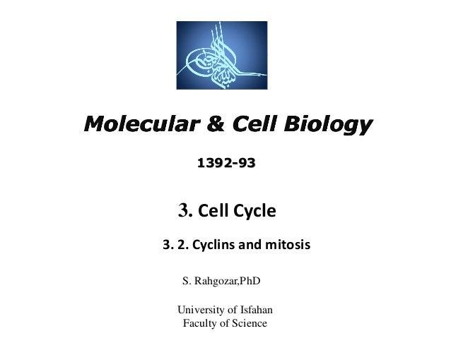 Molecular Biology uni subjects